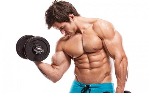 رشد و پیشرفت،حفظ و نگهداری بدن
